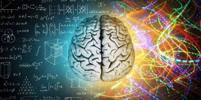 Uzmanından uyarı: Kullanılmayan beynin kapasitesi düşüyor